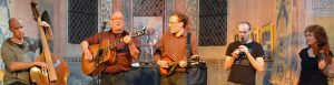 Mit Fidel, Bass und Brummtopf @ Patronatskirche